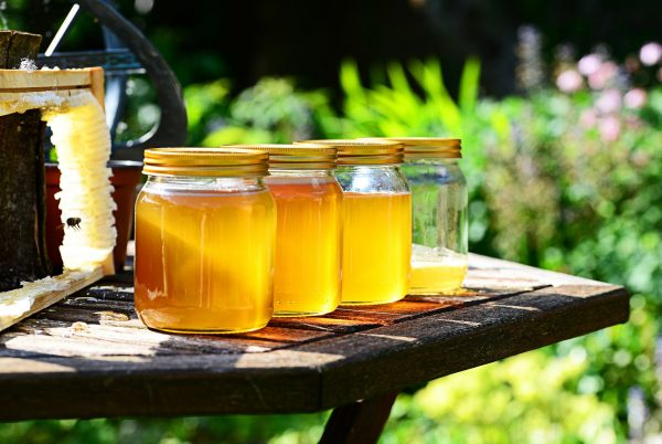 Raw Honey from Live Bee Removal